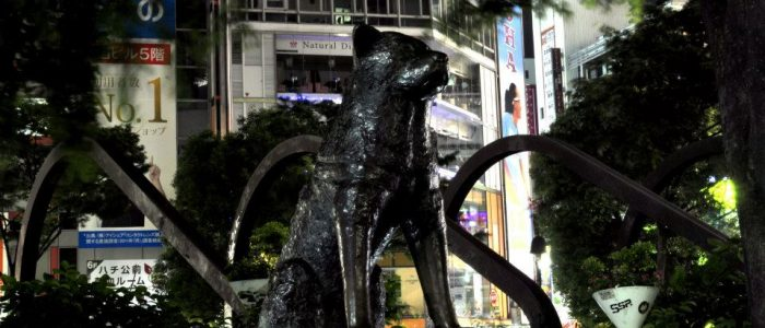 A statue of a dog against the background of a city.